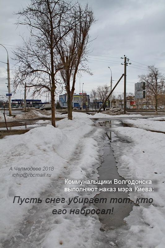 sneg_5647