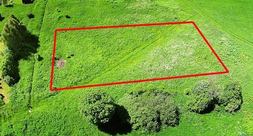 выделить земельный участок из земельного участка